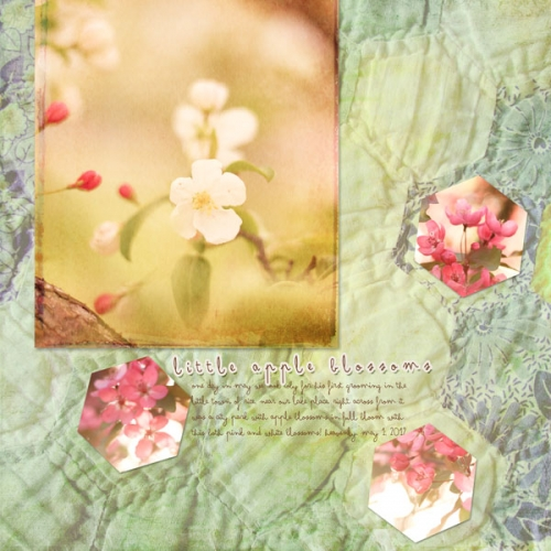 appleblossoms2013_piecesme13_03_shapeblends1