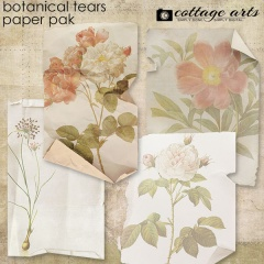 cottagearts-botanicalstears-papers-prev