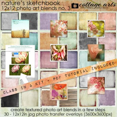 cottagearts-photoartblends3-prev
