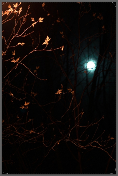 halloween3_blog_cottagearts