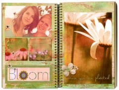 journal2_ns6_bloom
