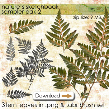 naturesketchsampler2