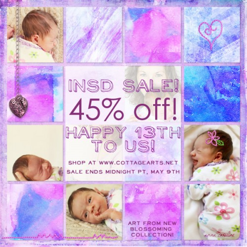 http://www.cottagearts.net/blog/wp-content/uploads/2016/05/2016-iNSD-sale-13th-500x500.jpg