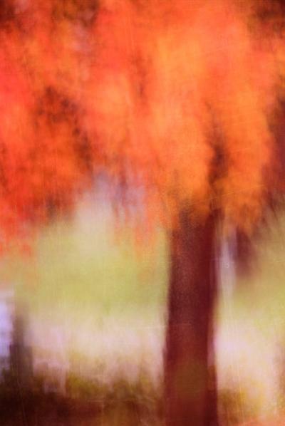 01-abstract-mshefveland.jpg
