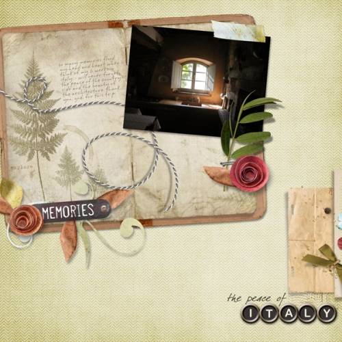 italyalyssa2011_journals17_featheredferns