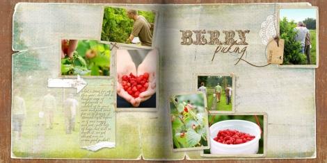 berry_picking2.jpg