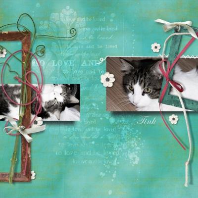 cat_love_0.jpg