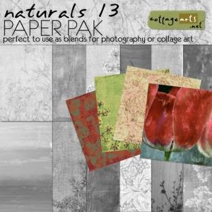 cottagearts-naturals13-paper-prev.jpg