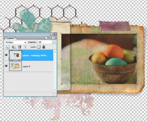 eggs3_mshefveland.jpg
