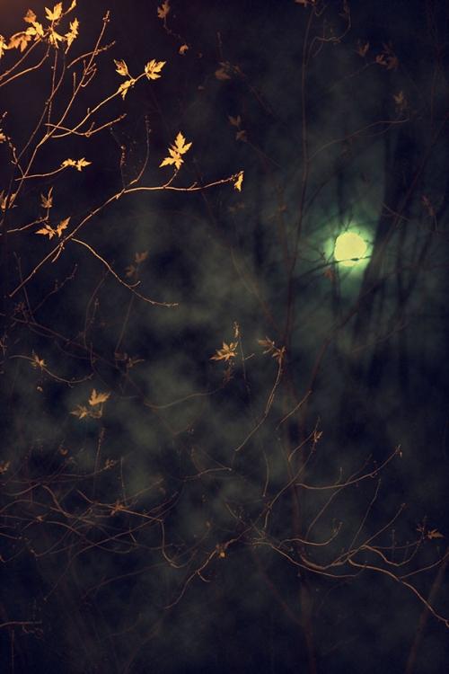 halloween11_blog_cottagearts