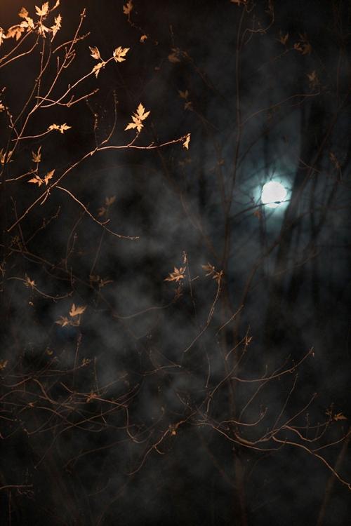 halloween8_blog_cottagearts