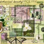 cottagearts-botanicalbeauty-prev.jpg